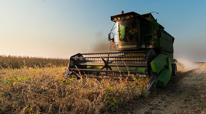 agricultural-market